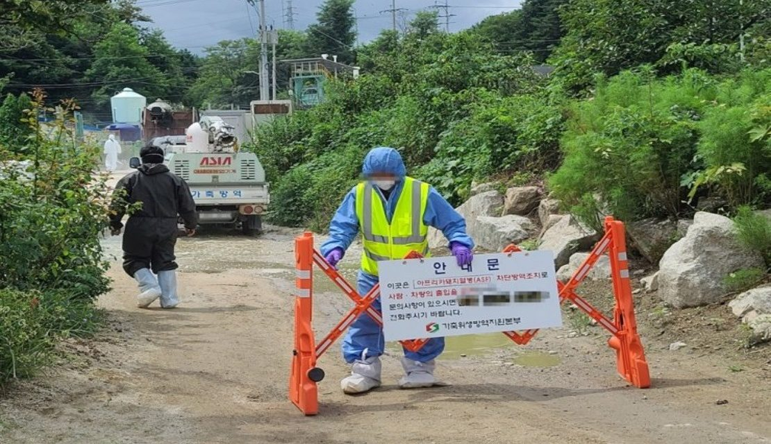 https://www.southerncrescent.com.my/wp-content/uploads/2021/08/S.-KOREA-REPORTS-ADDITIONAL-AFRICAN-SWINE-FEVER-CASE-SOUTHERN-CRESCENT-SDN-BHD-NEGERI-SEMBILAN-WHATSAPP-0199199334-1110x640.jpg